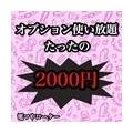 オプション使い放題2000円!