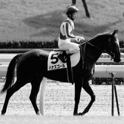 [水戸正晴の競馬予想ブログ]サンスポ、水戸正晴の万券を生む血統論「名手・武豊騎手が勝利に導…