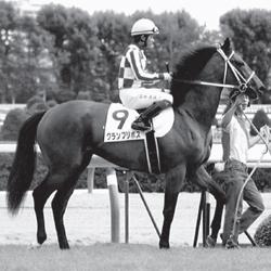 [片山良三の競馬予想ブログ]武豊番、片山良三の栗東ナマ情報「連軸はグランプリボスが最適」