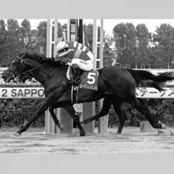 [水戸正晴の競馬予想ブログ]サンスポ、水戸正晴の万券を生む血統論「人気ローマンレジェンドへ…