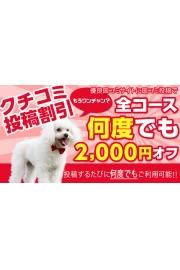 オフィシャルメルマガ会員登録でプレイ時間プラス10分!!【8